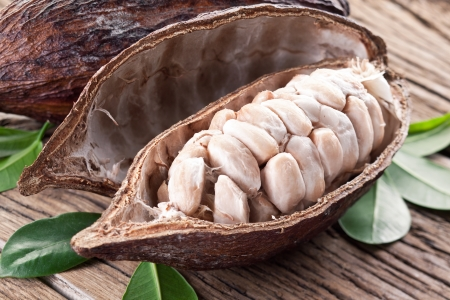 Cocoa pod on a dark wooden table  photo