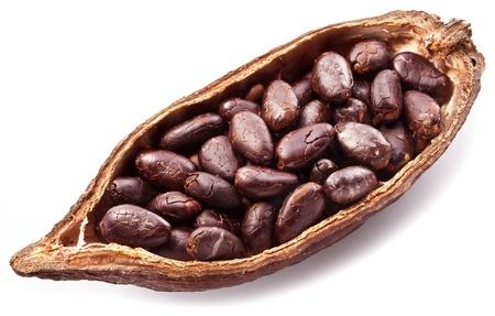 Open cocoa pod on a white background. photo