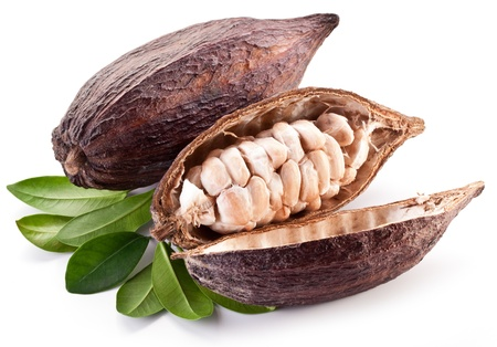 pods: Cocoa pod on a white background. Stock Photo