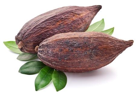 Cacao pod op een witte achtergrond. Stockfoto