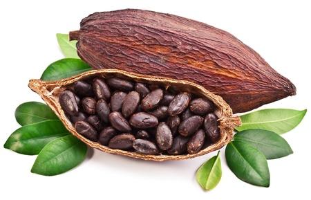 Cocoa pod op een witte achtergrond. Stockfoto