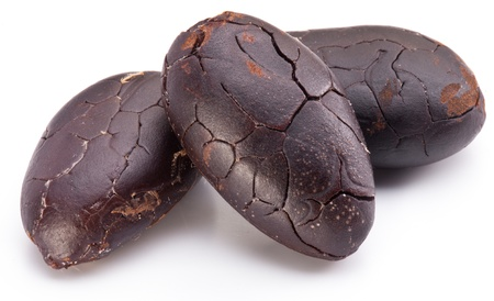 Cocoa beans on a white background. photo