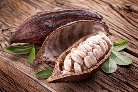 cacao: Cacao vaina sobre una mesa de madera oscura Foto de archivo