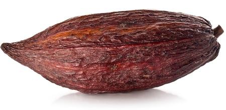 pod: Cocoa pod on a white background. Stock Photo