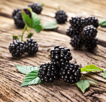 bramble: Blackberries isolated on wooden background.