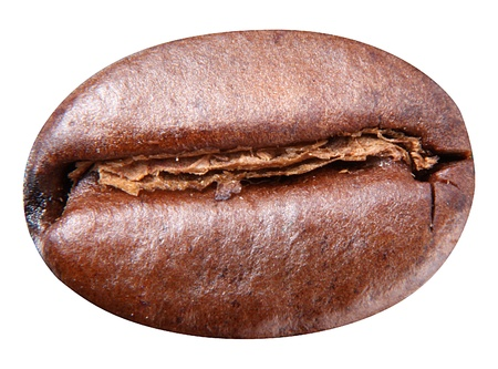 Coffee bean isolated on white background. Bean have to clipping path. Standard-Bild