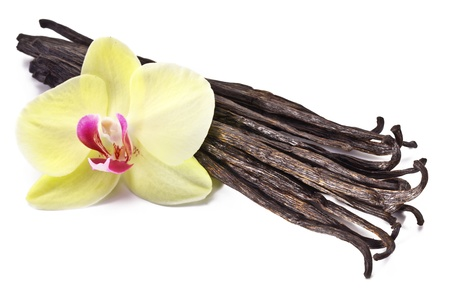 vanilla flower: Vanilla sticks with a flower on a white background.