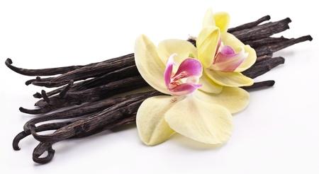 Vanilla stokjes met een bloem op een witte achtergrond.