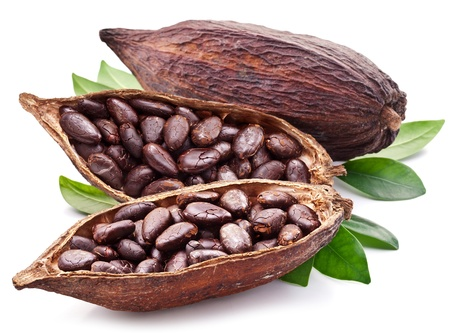 Cocoa Pod auf wei?em Hintergrund.