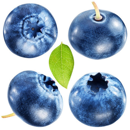 veiw: Four blueberries with leaf  in different veiw shot. Studio isolated. Stock Photo
