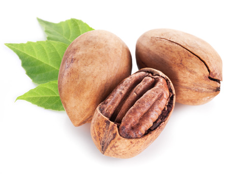 pecan: Pecan nuts with leaves isolated on a white background. Stock Photo