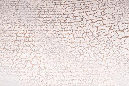 craquelure: Blanco resquebrajadura superficie de madera. Grietas.
