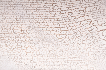 craquelure: White wooden surface crazing. Craquelure.