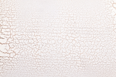 crazing: White wooden surface crazing. Craquelure.