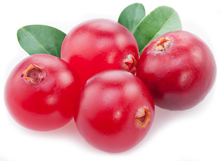 cranberry: Cranberries with leaves on a white background.