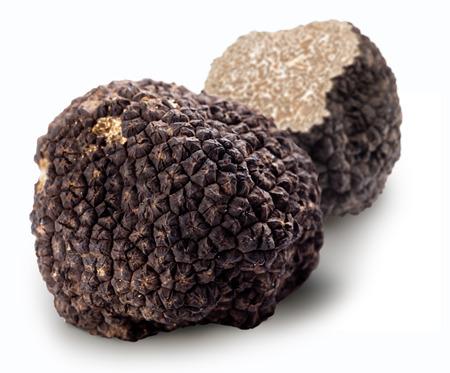 Black truffles on a white background.