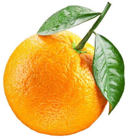 Orange with leaves isolated on a white background. Image with a maximum depth of field. Clipping path