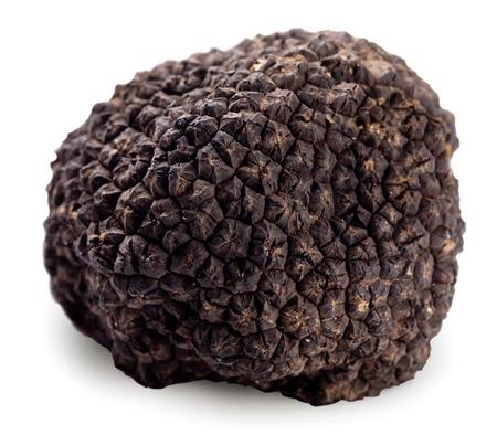 truffe blanche: Truffe noire sur un fond blanc. Chemin de détourage. Banque d'images
