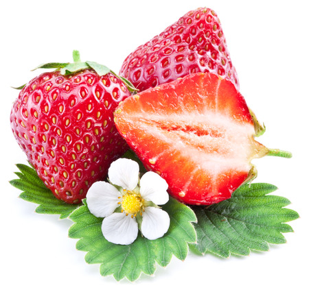 Strawberries with leaves and flower isolated on a white background. photo