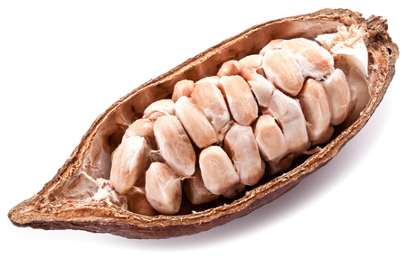 Open cocoa pod on a white background.