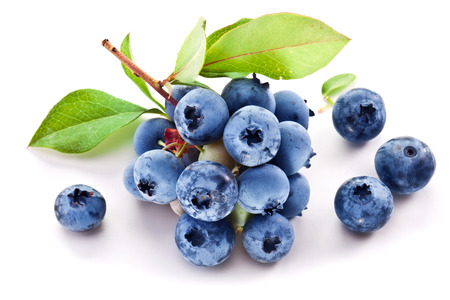blueberry jam: Blueberries with leaves on a white background. Studio isolated.