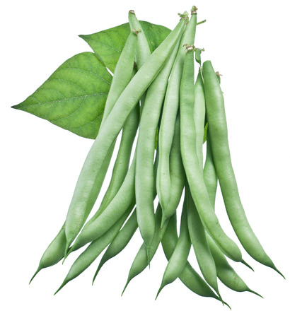 Fresh green beans isolated on a white background. photo