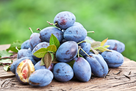 berry fruit: Plums on an old wooden table in the garden. Stock Photo