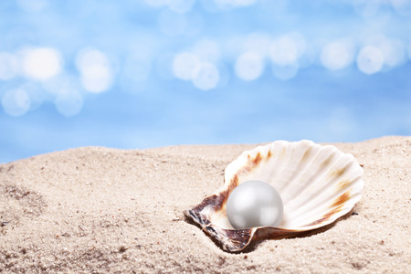 pearl shell: Shell with a pearl on a sea sand.