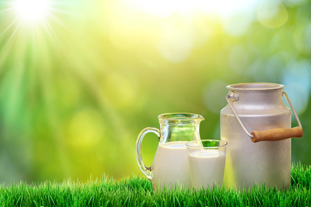 milk jugs: Fresh organic milk. Nature background.