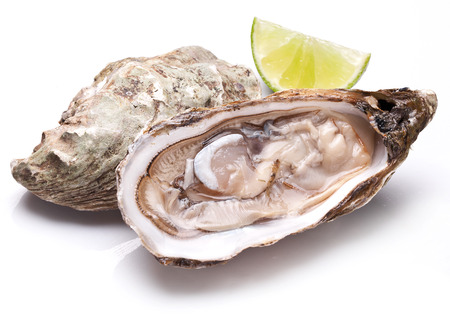oyster: Raw oyster and lemon isolated on a whte background.