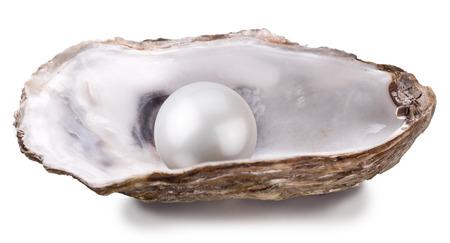 Ffnen Sie Auster mit Perle auf weißem Hintergrund. Standard-Bild - 35572882