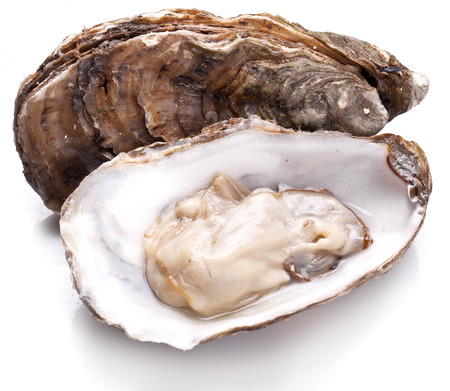 Raw oyster on a whte background.