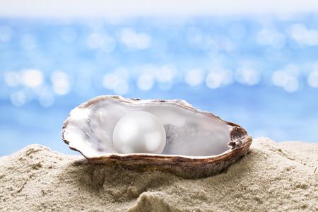 Ostra perla en la arena. Mar borrosa en el fondo.