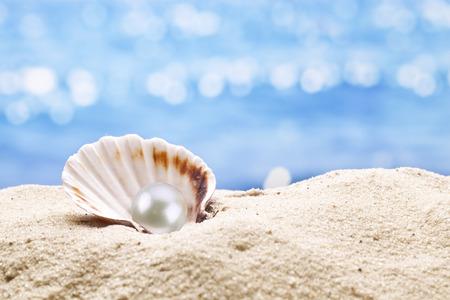 모래에 진주 굴. 배경에서 흐려 바다.