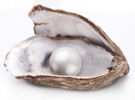 perlas: Abra la ostra con la perla aislado en fondo blanco.