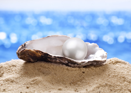 Shell with a pearl on a sea sand. Imagens - 35827800