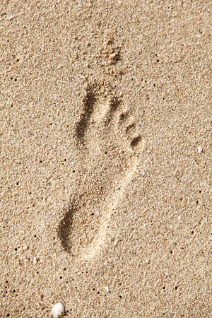 Single footprint on the sand.