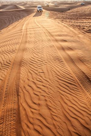 desierto: Arena ondulada en desierto.