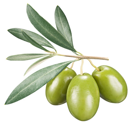olive green: Green olives with leaves on a white