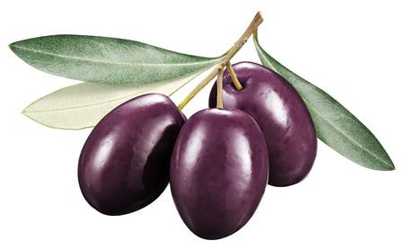 kalamata: Kalamata olives with leaves on a white  Stock Photo
