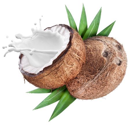 coco: Coco con leche salpicaduras en el interior. Archivo contiene trazados de recorte.