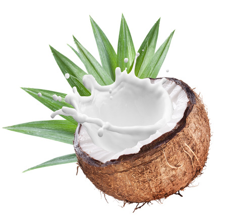 objects with clipping paths: Coconut with milk splash inside. File contains clipping paths.