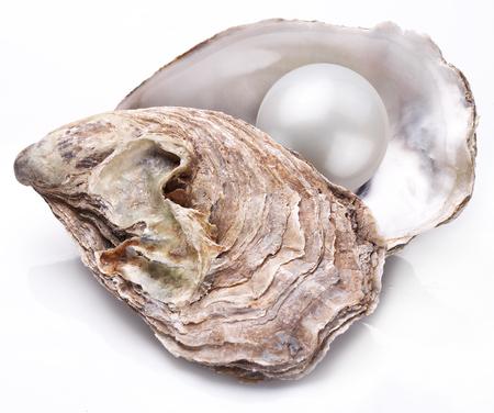 Open oester met parel geïsoleerd op een witte achtergrond. Stockfoto