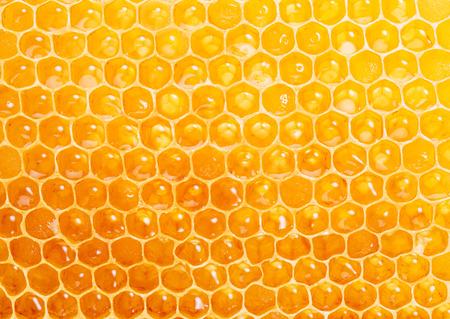 Bienenwabe. Ein hochwertiges Bild. Makroaufnahme. Standard-Bild - 46547387