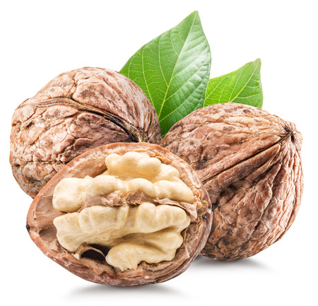 healthy path: Walnuts with leaves. File contains clipping paths.