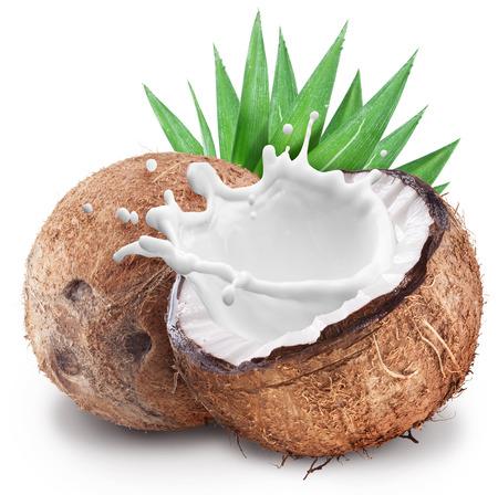 leche: Coco con leche salpicaduras en el interior. Archivo contiene trazados de recorte.