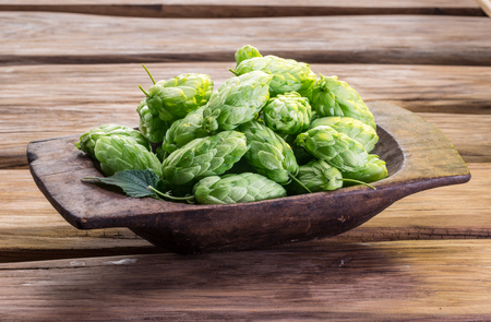 hop cones: Hop cones in the wooden tray on the wooden table.