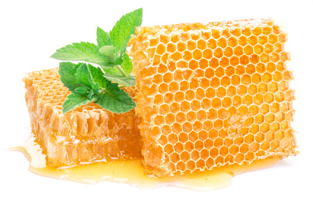 Honeycomb and mint on a white background.  High-quality picture. 스톡 콘텐츠