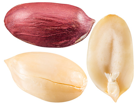 monkey nut: Peeled and opened peanuts. File contains three clipping paths.