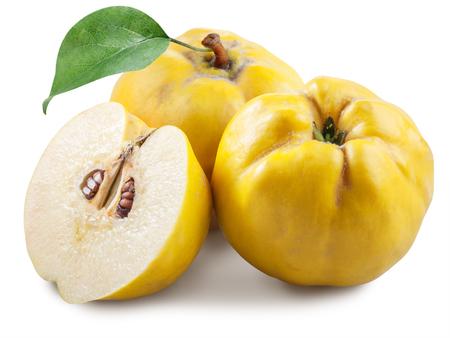 membrillo: Manzanas-membrillo con la hoja. Foto de archivo